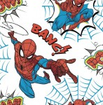 Tapeta Individual KIDS HOME 108553 SPIDERMAN
